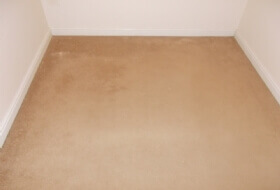 Carpet Cleaning in Swindon